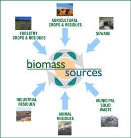 biomass_sources.jpg